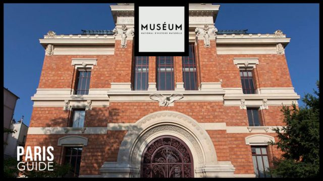 国家自然历史博物馆